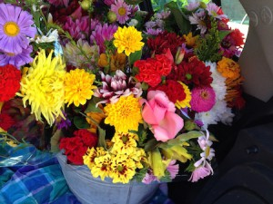 fleurs_2015