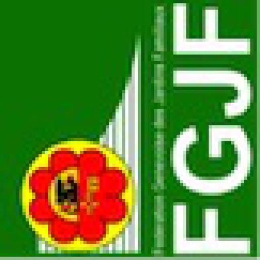 cropped-Comité-FGJF-drapeau-FGJF.jpg