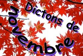 dictons_novembre